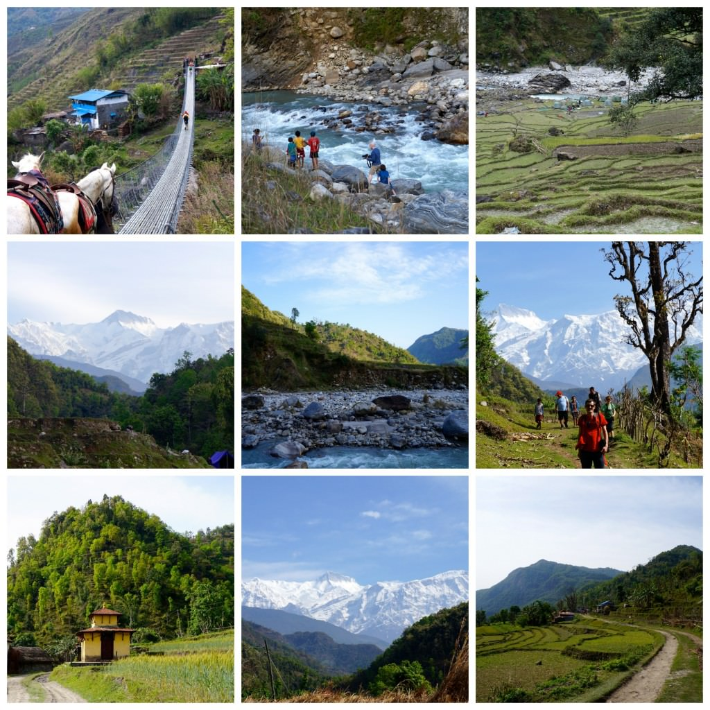 nepalese momos